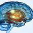 Διεγχειρητική νευροπαρακολούθηση